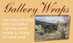 Custom Canvas Gallery Wrap Prints